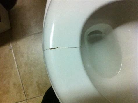 cracked glass toilet seat cracked toilet seat gave pinch picture of woogo