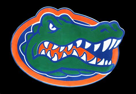 florida gators colors florida gators logo florida gators symbol meaning