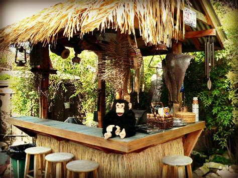 safari themed events 17 best images about african themed events on pinterest