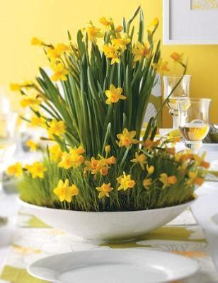 Ideas For Daffodil Varieties Design 1000 Images About Easter Decor On Perennial Grasses Easter Table Settings And Easter