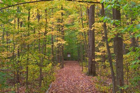 slideshow 470 14 wilson trail in sapsucker woods