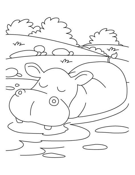 free coloring pages hippo free coloring pages of drawings of hippo