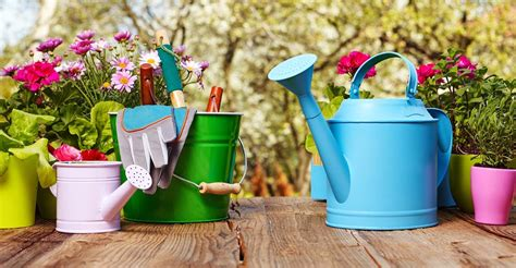 basic gardening tools    garden life