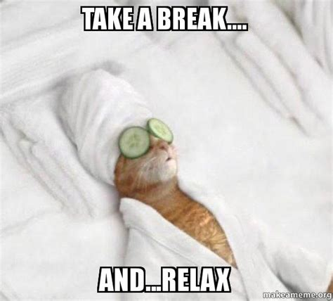 Relaxing Memes - take a break and relax pered cat meme make a meme