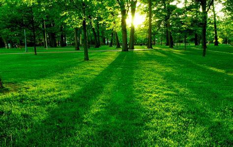 imágenes de paisajes muy bonitos im 225 genes de paisajes bonitos