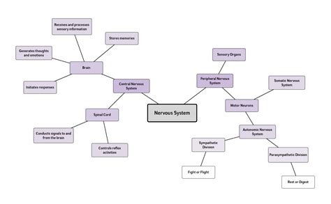 mind map exles and templates lucidchart