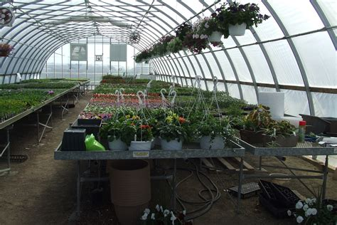 Big Greenhouses by Large Greenhouses Multi Shelter Solutions