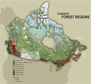 canada crown land map canada s forests sustainability and management ccfm