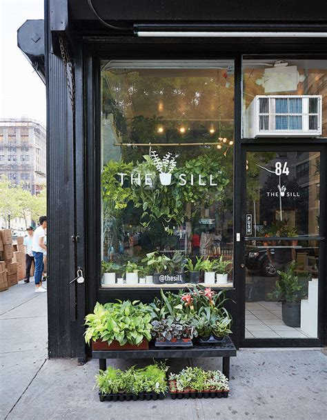 the store that s changing how city dwellers buy plants manhattan planters and plants