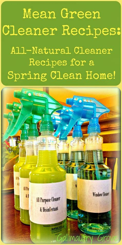 spring cleaning meaning 81 best natural cleaning images on pinterest cleaning