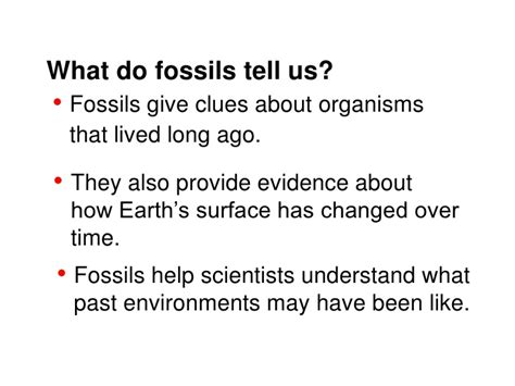 exposure is and shell promptly tell you its skin cancer fossils teach