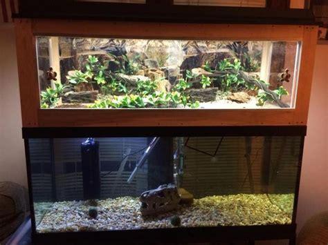 100 gal aquarium second floor 80 best images about fish tanks on betta fish