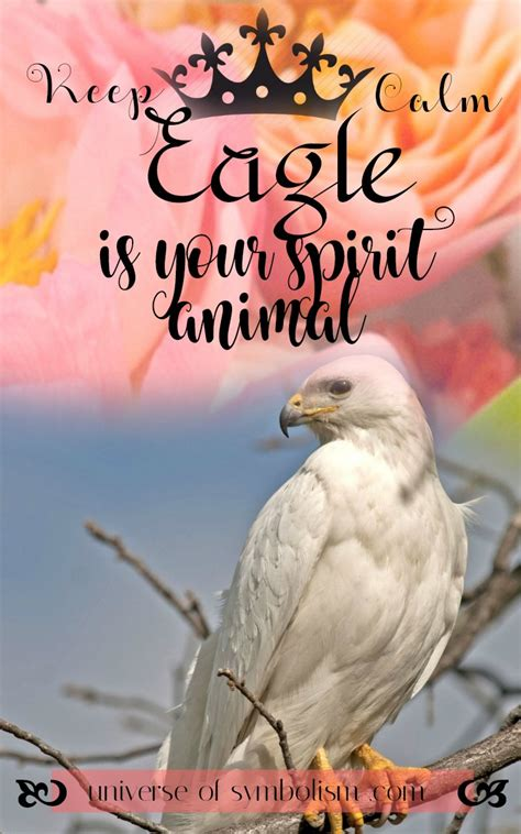 eagle symbolism eagle meaning eagle spirit animal guidance