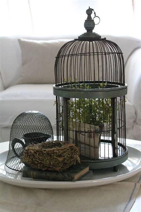 kreatif memanfaatkan dekorasi sangkar burung  rumah
