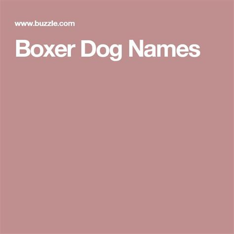 boxer names best 20 boxer names ideas on boxer boxer puppies and boxer puppies