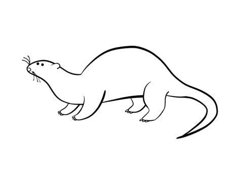 Free Coloring Pages Of Sea Otter Otter Coloring Pages