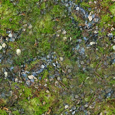 the gallery for gt seamless forest ground texture