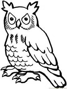 owl pictures to color free printable owl coloring pages for