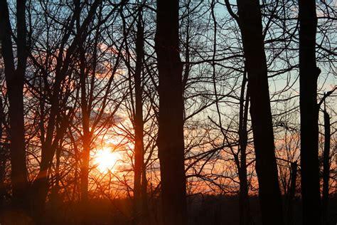 darkest hour charlotte nc sunset woods 01 by thy darkest hour d4tfnde my carolina