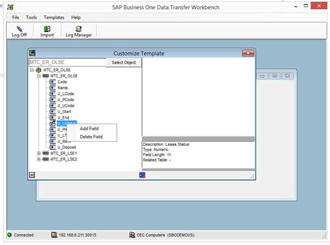 templates sap business one the easiest way to create udf and udo templates for dtw in