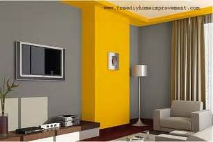 Home Interior Wall Colors Vibrant Interior Wall Paint