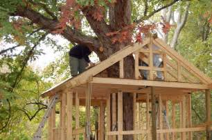 Build House Online Pictures Of Tree Houses And Play Houses From Around The