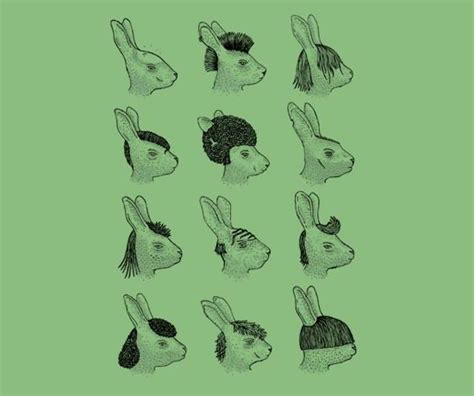 hare staly hare style rabbits pinterest