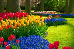 Gardens Inc 3 Flower Patterns Flower Garden Ideas Garden Ideas And Garden Design
