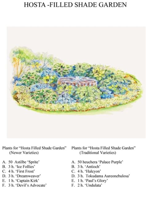 hosta garden layout made in the shade or sun green garden designs use