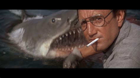 you re gonna need a bigger boat clip thought of the day we re gonna need a bigger boat
