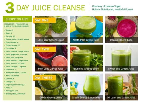 3 Day Food Detox by Our 3 Day Juice Cleanse Omega Juicers Leanne Vogel