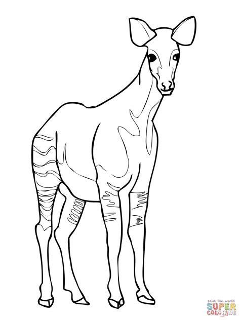 301 Moved Permanently Okapi Coloring Pages
