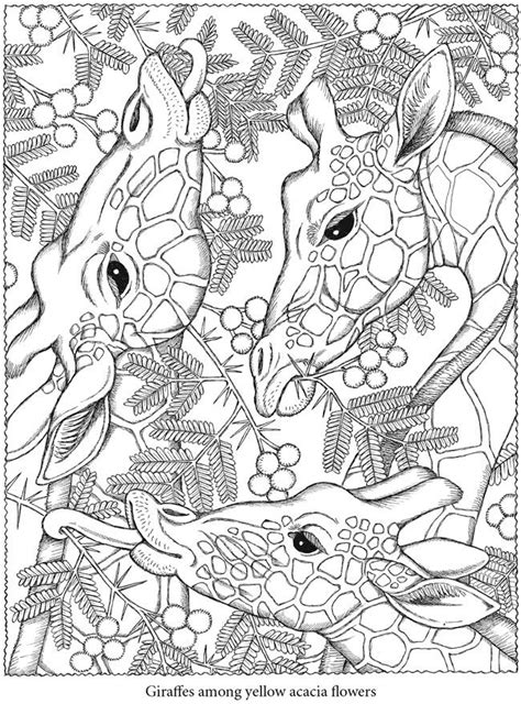 coloring pages of animals with designs animal design coloring pages az coloring pages