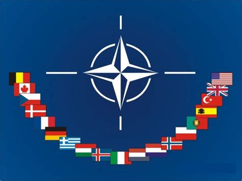 Nato Essay by Nato In The Crosshairs Of Critique