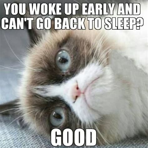 Go Sleep Meme - 30 funniest grumpy cat memes images pictures stock