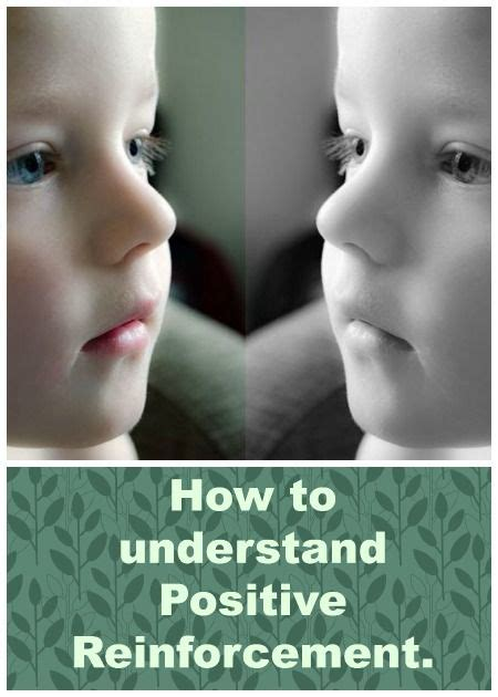Parenting Advice Meme - 24 best we are family shared board images on pinterest