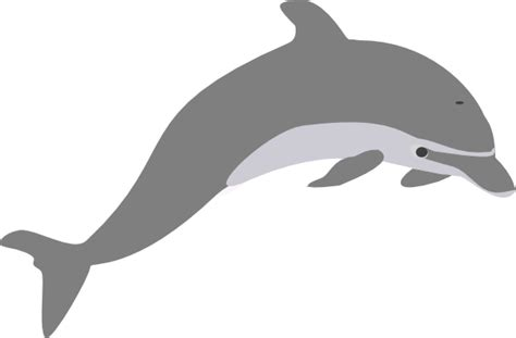 dolphin outline clipart best free dolphin images cliparts co