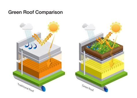 living green roof advantages environmental advantages of green rooftops eco design