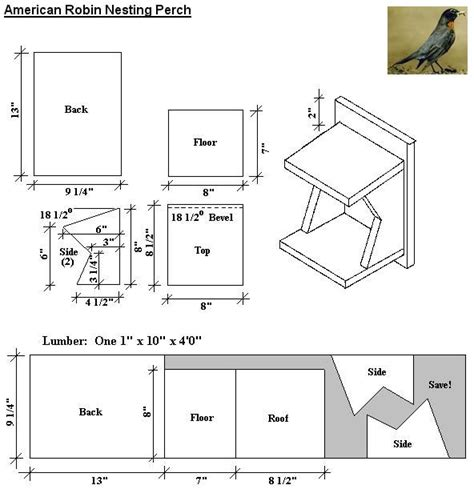 american robin nesting perch plans outdoors pinterest