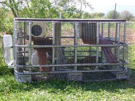 Heated Rabbit Hutch heated outdoor cat enclosures outdoor cat enclosure and