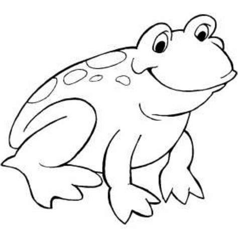 frog outline coloring home