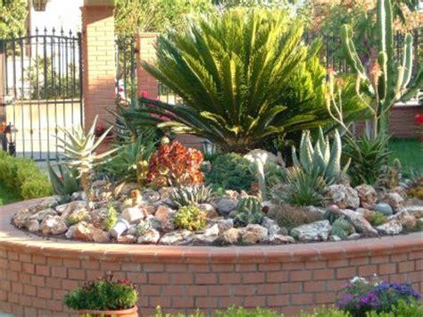 esempi di giardini rocciosi consigli su come curare i giardini rocciosi in estate