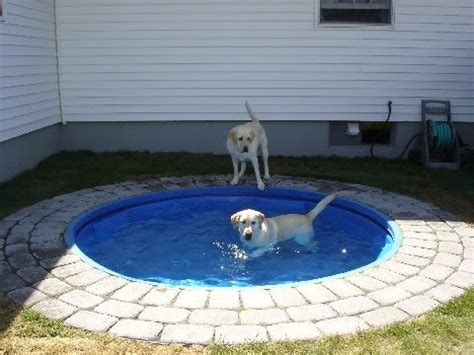 pool fire pit how to build a combo kiddie pool fire pit tips for 20