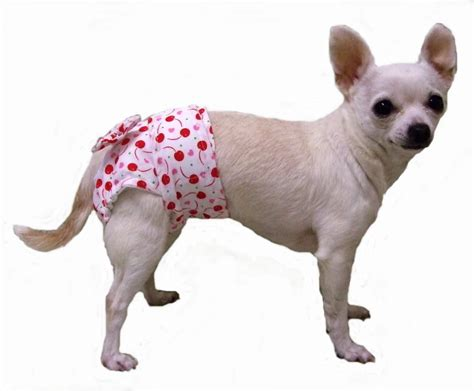 dogs in diapers lepley s small clothing made clothes for small dogs
