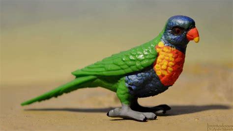 rainbow lorikeet wings   world  safari  animal toy blog