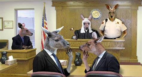 define bench trial kangaroo court the bernard olcott story