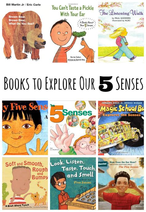 five books book picks for exploring our 5 senses make and takes