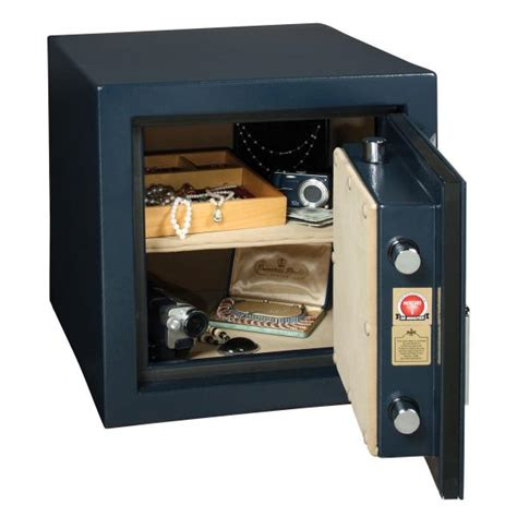 amsec am2020e5 gun and home security safe