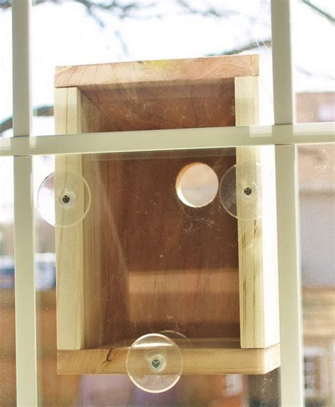 how to build a window bird house for under 20 dollars step