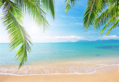 best beaches in world top 10 best beaches in the world travel favourites